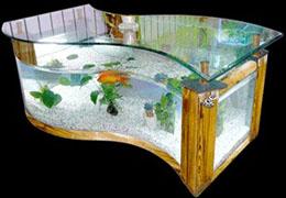 风水水族生态鱼缸