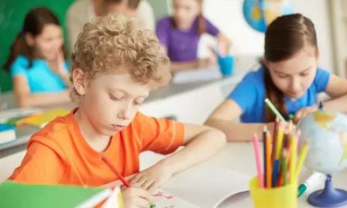 中小学教育辅导机构